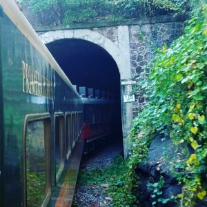 copper-canyon-train-going-into-tunnel