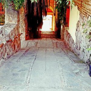 hotel-posada-del-hidalgo-from-bar-area